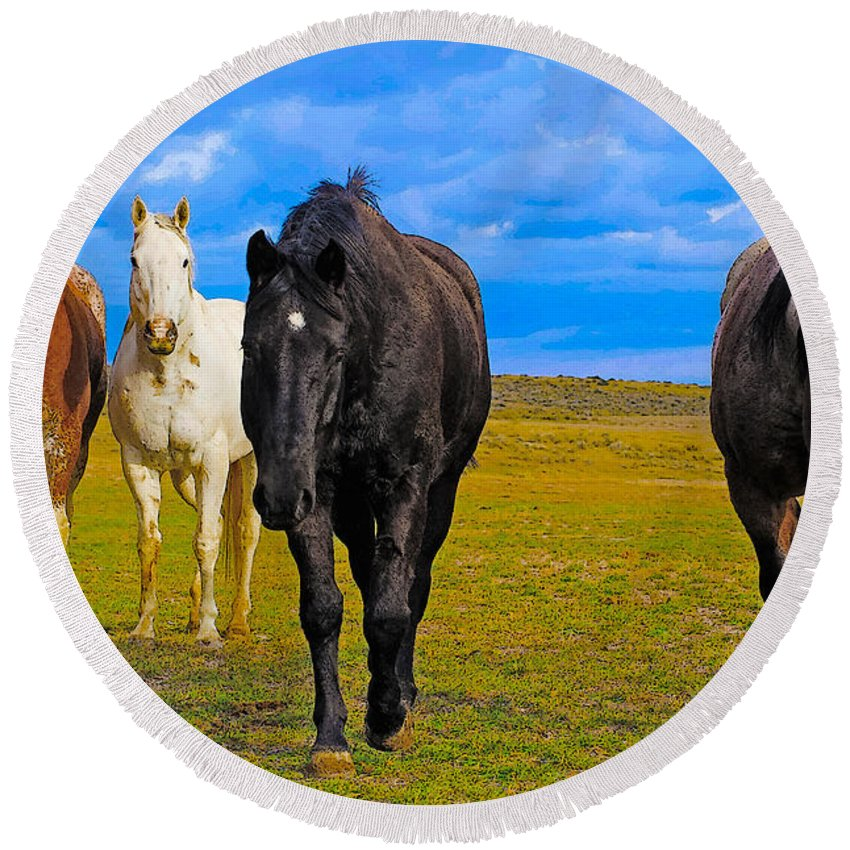 Horse Art Round Beach Towel featuring the photograph The Four Musketeers by Amanda Smith