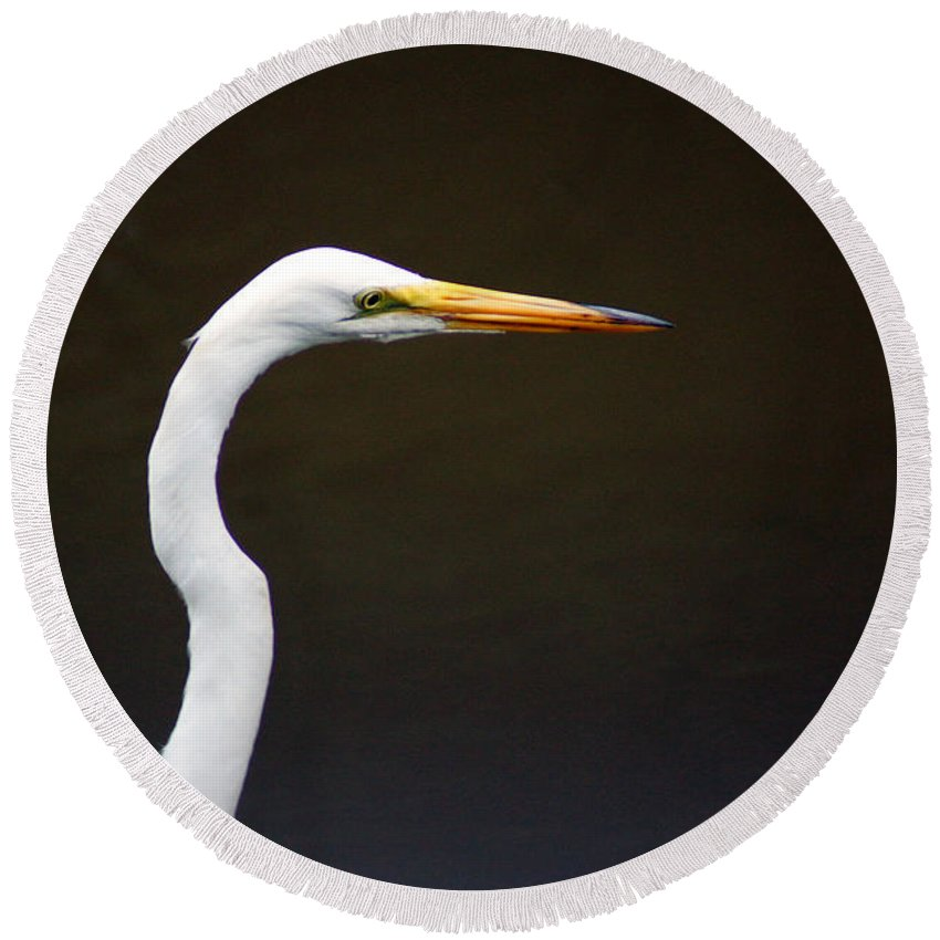 The Great Egret Round Beach Towel featuring the photograph The Great Egret Head Shot by Kim Pate