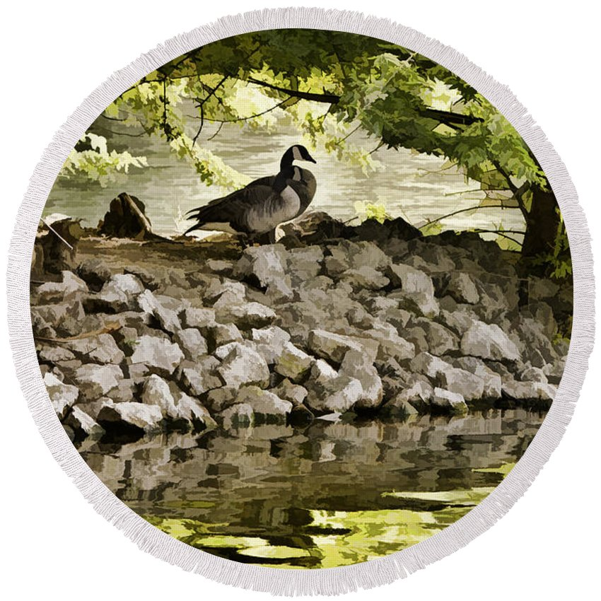 Canada Goose Round Beach Towel featuring the photograph The Hideaway by Diana Powell