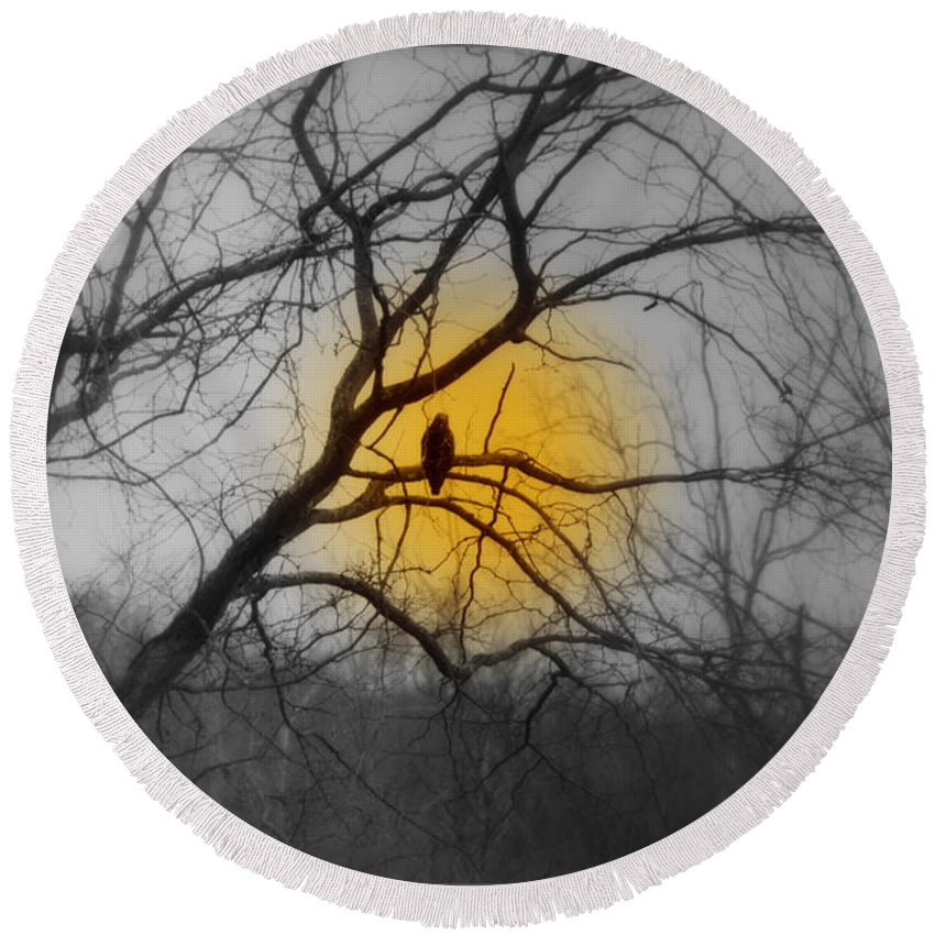 Hunters Round Beach Towel featuring the photograph The Hunters Moon And The Barred Owl by Kathy Barney