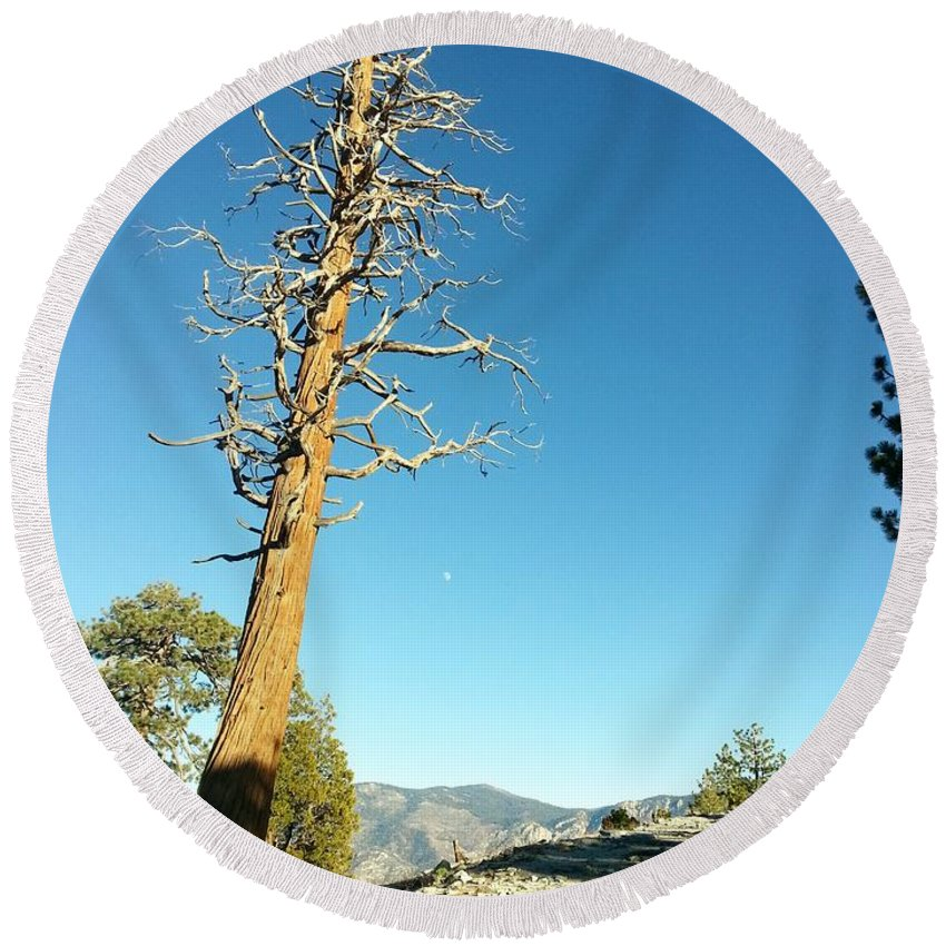 Tree Round Beach Towel featuring the photograph The Lone Tree by Cathy Smith