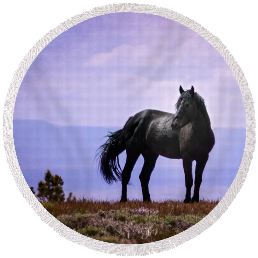Animal Round Beach Towel featuring the photograph The Majestic Stallion by WyoGal Photography