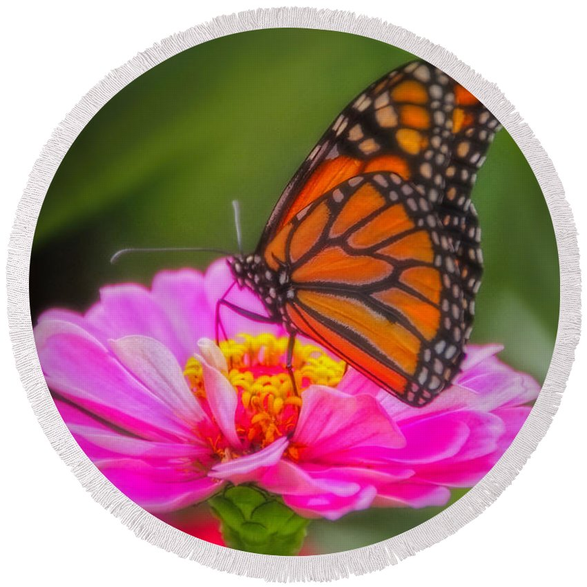 Monarch Butterfly Round Beach Towel featuring the photograph The Monarch's Flower by Elizabeth Winter