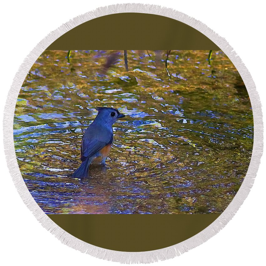 Reflections Round Beach Towel featuring the photograph The Naiad by Gary Holmes