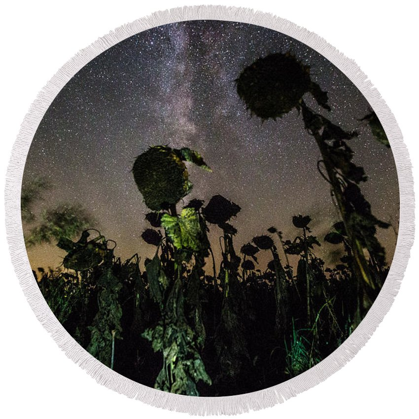 Plants Round Beach Towel featuring the photograph The Night Of The Triffids by Aaron J Groen