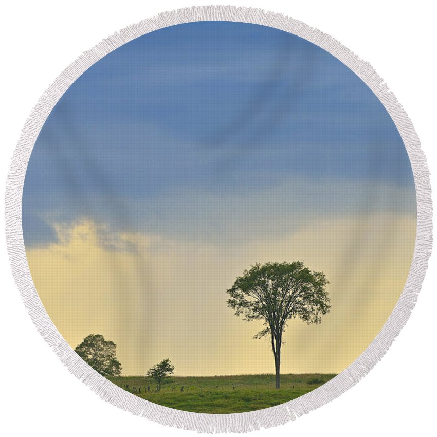Storm Round Beach Towel featuring the photograph The Old Elm by Joshua McCullough