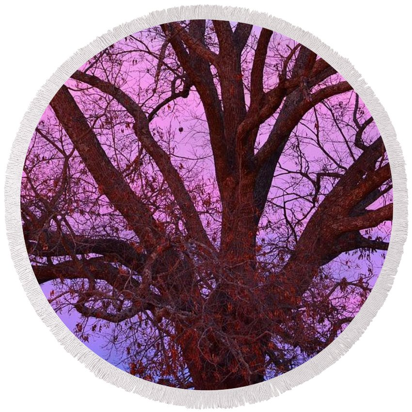 Oak Tree Round Beach Towel featuring the photograph The Old Oak by Deanna Cagle