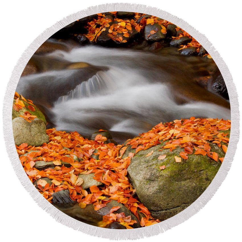 America Round Beach Towel featuring the photograph The Orange Stream by Mircea Costina Photography