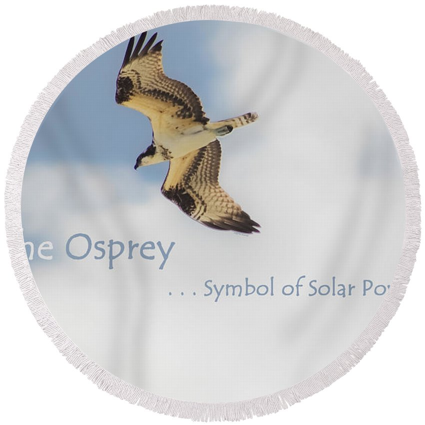 Osprey Round Beach Towel featuring the photograph The Osprey by DigiArt Diaries by Vicky B Fuller