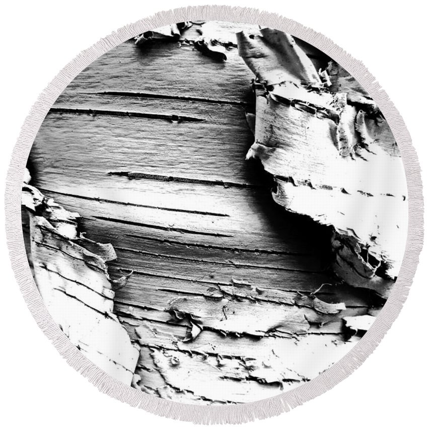 Monochrome Round Beach Towel featuring the photograph The Peeling Birch by Steve Taylor