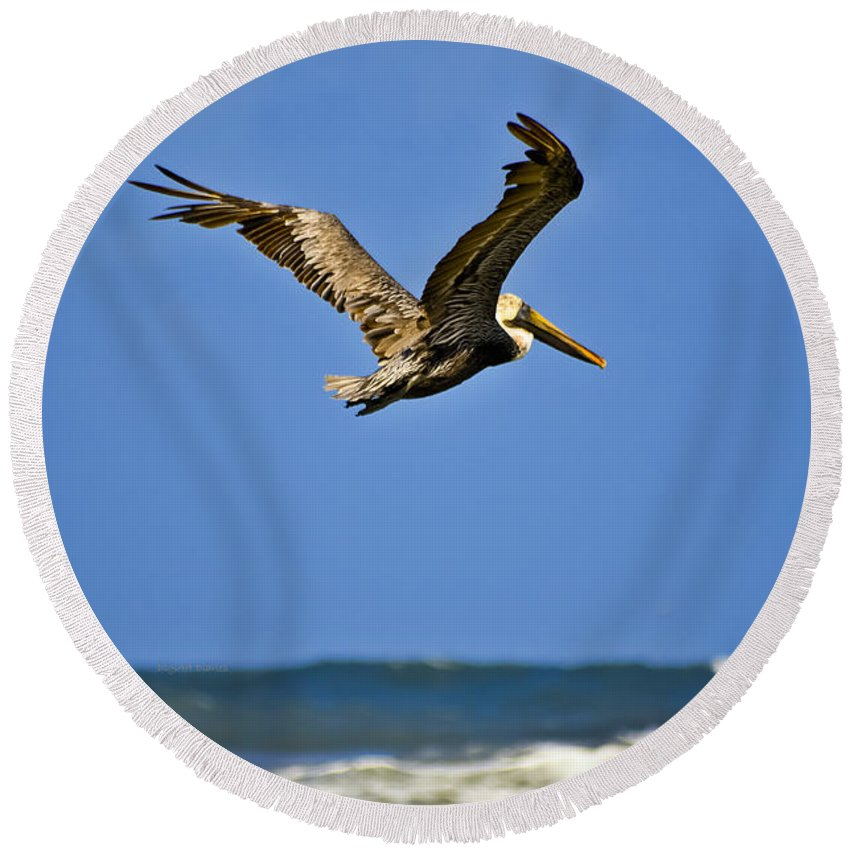 Pelican Round Beach Towel featuring the photograph The Pelican And The Sea by DigiArt Diaries by Vicky B Fuller