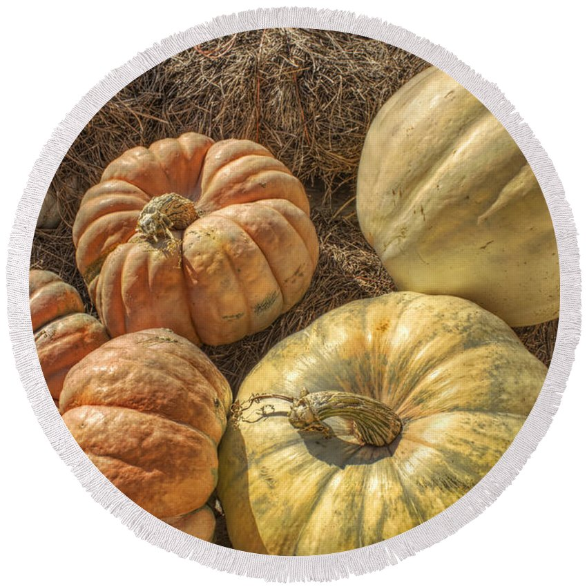 Pumpkin Round Beach Towel featuring the photograph The Pumpkins Of Autumn by Jason Politte