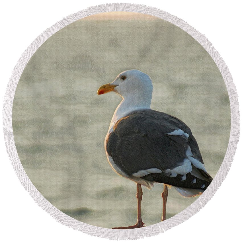 Seagull Round Beach Towel featuring the photograph The Seagull by Ernie Echols