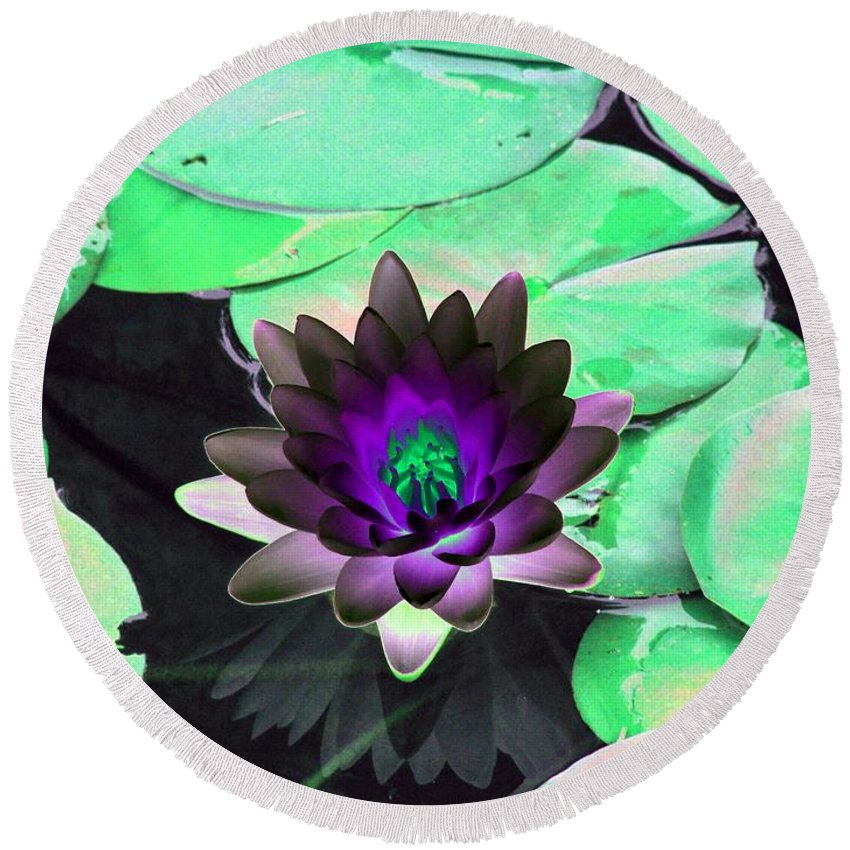 Water Lilies Round Beach Towel featuring the photograph The Water Lilies Collection - Photopower 1113 by Pamela Critchlow