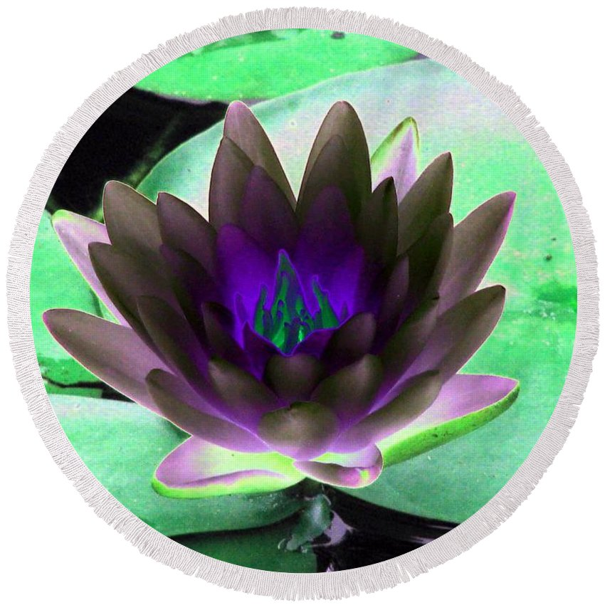 Water Lilies Round Beach Towel featuring the photograph The Water Lilies Collection - Photopower 1116 by Pamela Critchlow