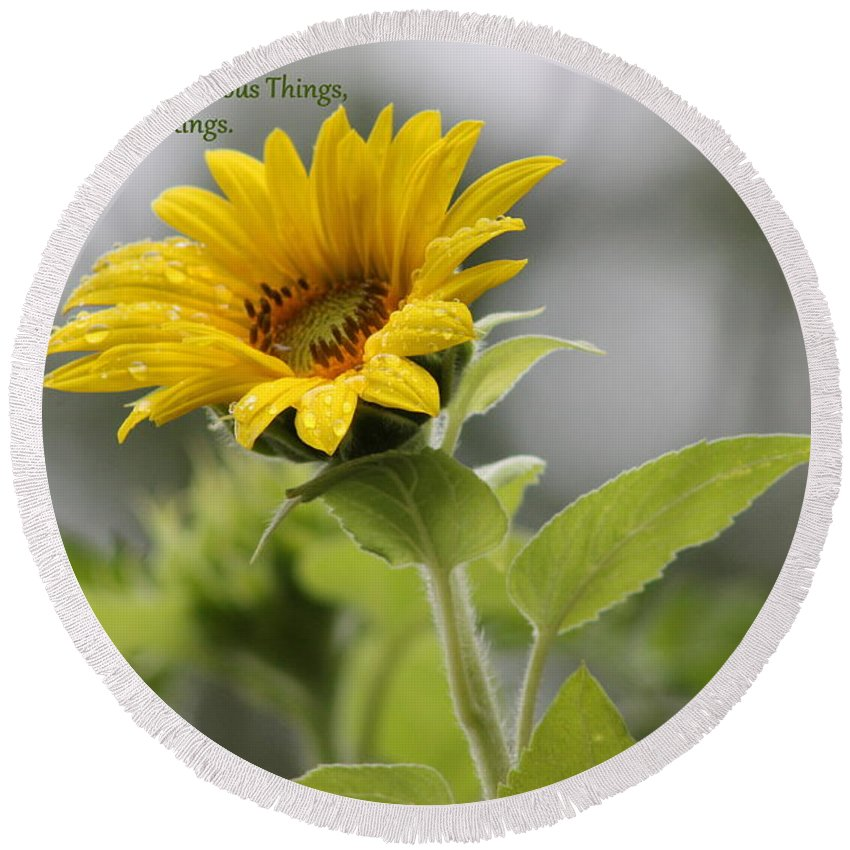 Sunflower Round Beach Towel featuring the photograph The World Is Full by Leone Lund