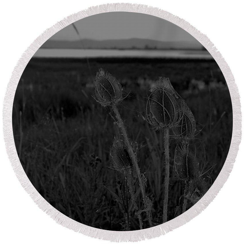 Round Beach Towel featuring the photograph Thistles At Ninepipes by Cathy Anderson
