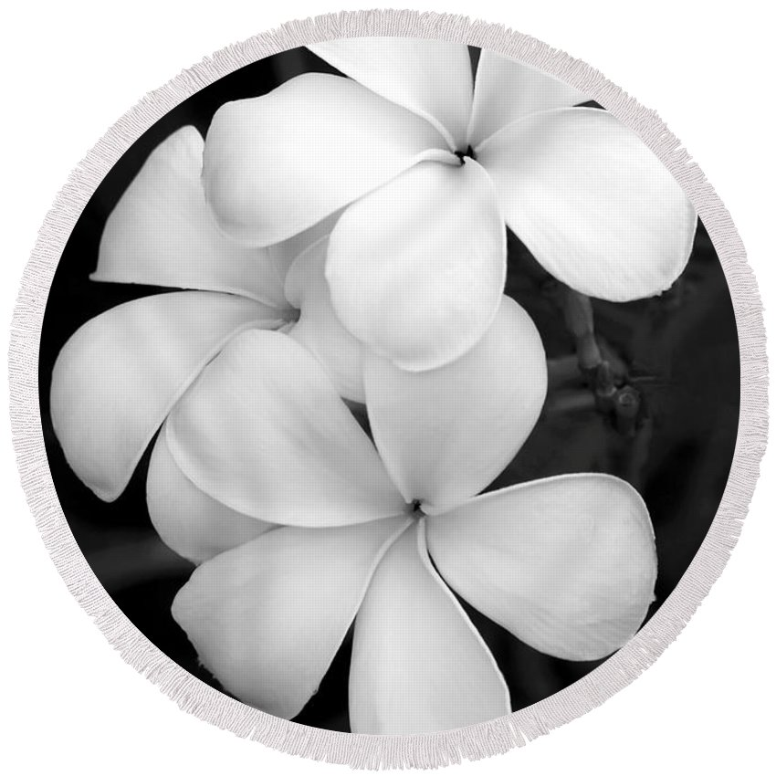 Macro Round Beach Towel featuring the photograph Three Plumeria Flowers In Black And White by Sabrina L Ryan