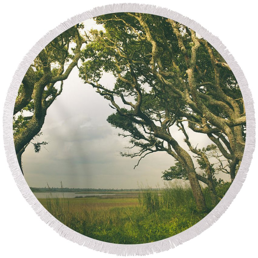 Live Oak Round Beach Towel featuring the photograph Through The Twisty Trees by Shane Holsclaw