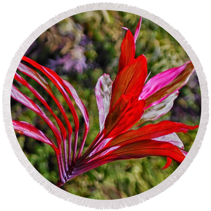 Plants Round Beach Towel featuring the photograph Red Ti Plant by Jim Thompson