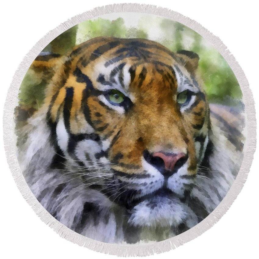 Aquarell Round Beach Towel featuring the photograph Tiger 26 by Ingrid Smith-Johnsen