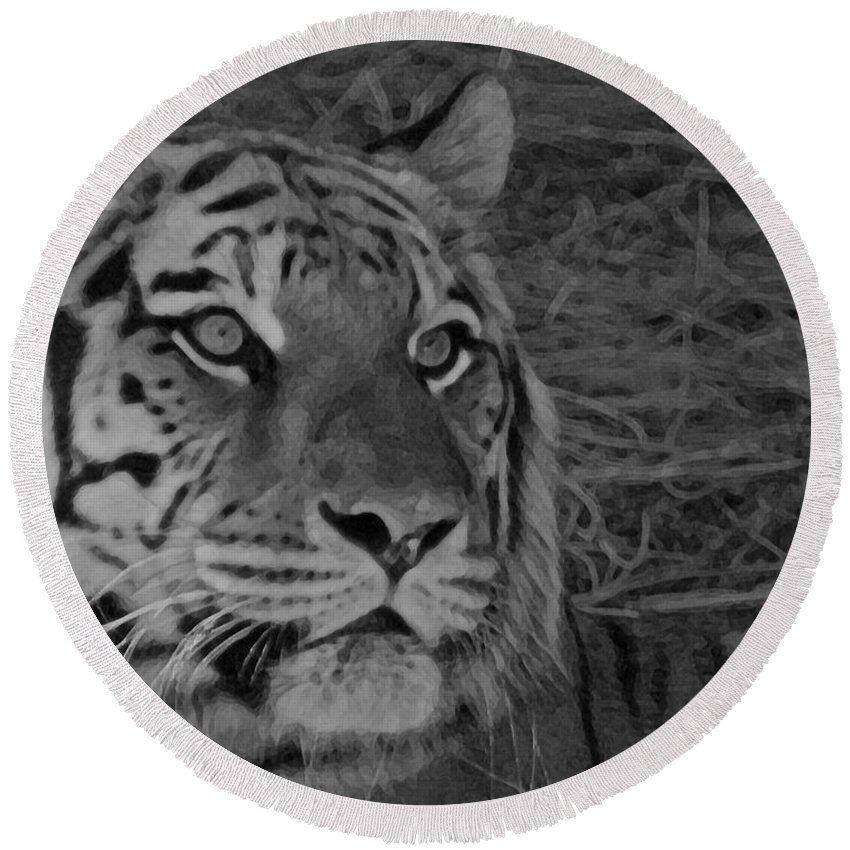 Tiger Round Beach Towel featuring the photograph Tiger Bw by Ernie Echols