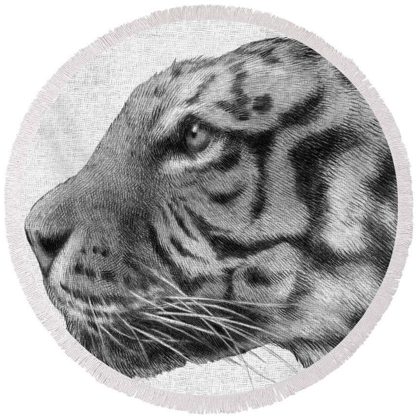 Tiger Round Beach Towel featuring the drawing Tiger by Eric Fan
