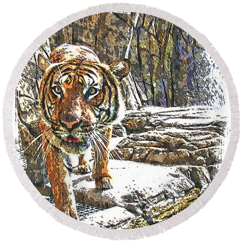 Tiger Round Beach Towel featuring the photograph Tiger View by Alice Gipson