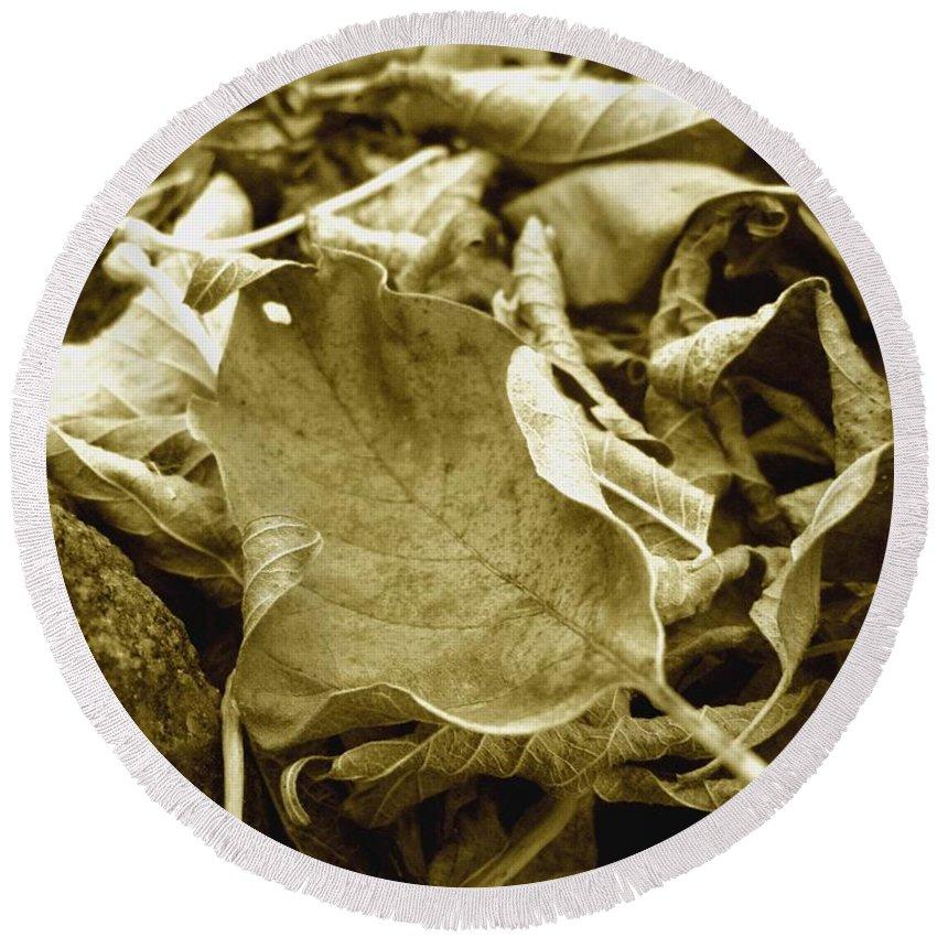 Leaf Round Beach Towel featuring the photograph Timeless by Rhonda Barrett