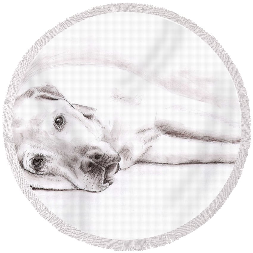 Dog Round Beach Towel featuring the drawing Tired Labrador by Nicole Zeug