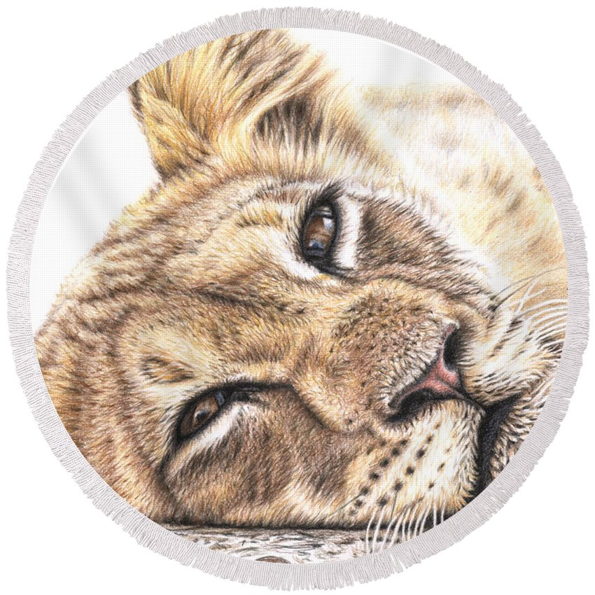 Lion Round Beach Towel featuring the drawing Tired Young Lion by Nicole Zeug