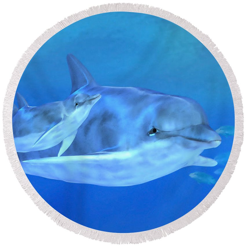 Dolphin Mother With Calf Round Beach Towel featuring the digital art Togetherness by John Edwards