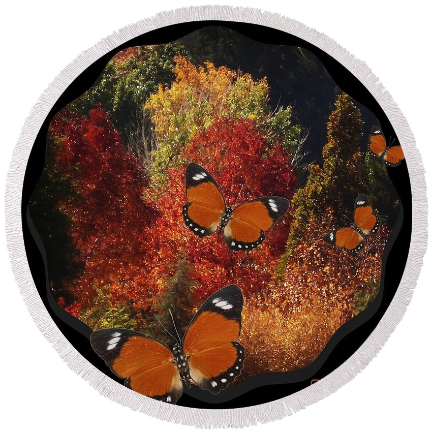 Fall Trees Round Beach Towel featuring the photograph Transforming by Bobbee Rickard