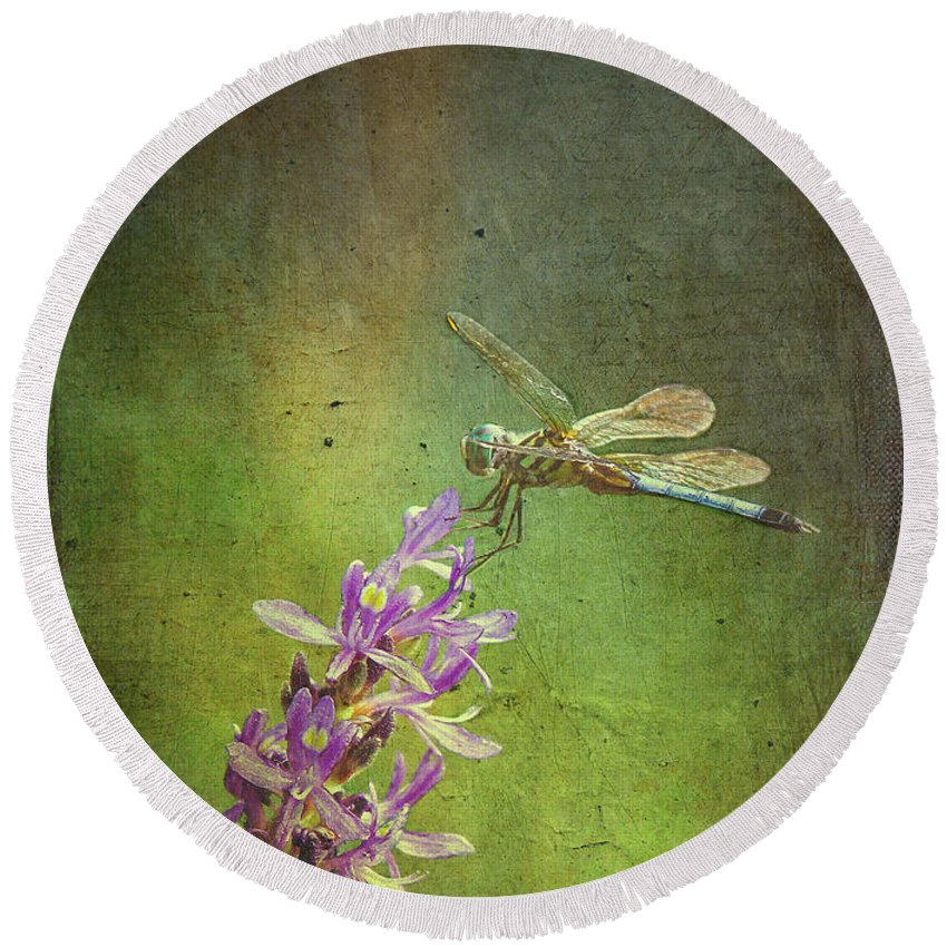Fine Art Print Round Beach Towel featuring the photograph Treading Lightly by Patricia Griffin Brett
