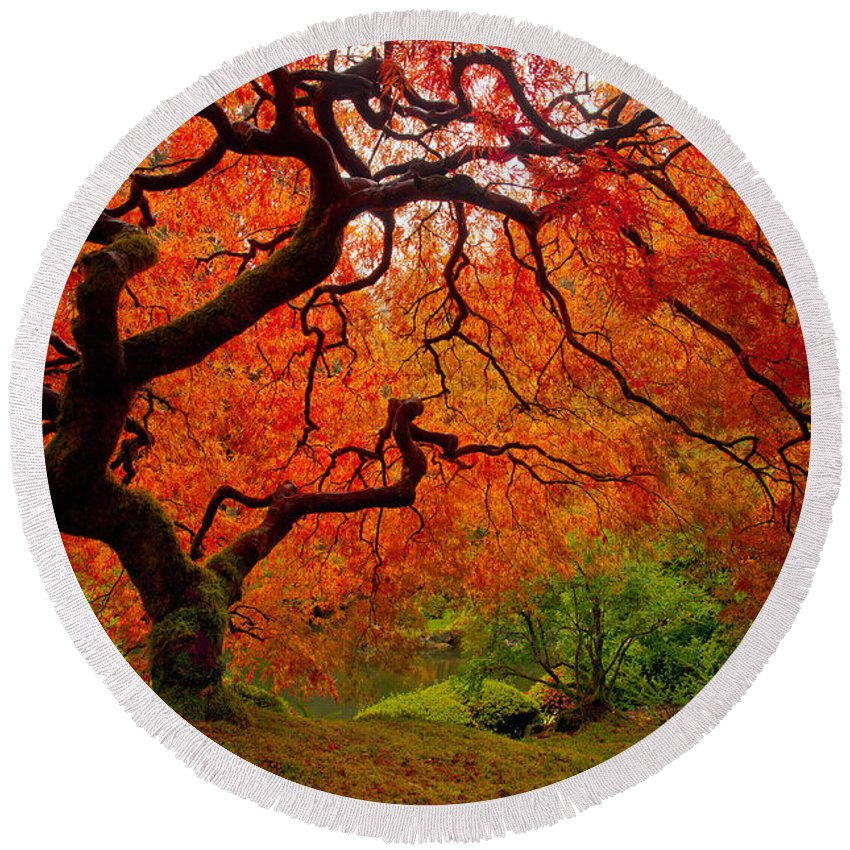 Portland Round Beach Towel featuring the photograph Tree Fire by Darren White