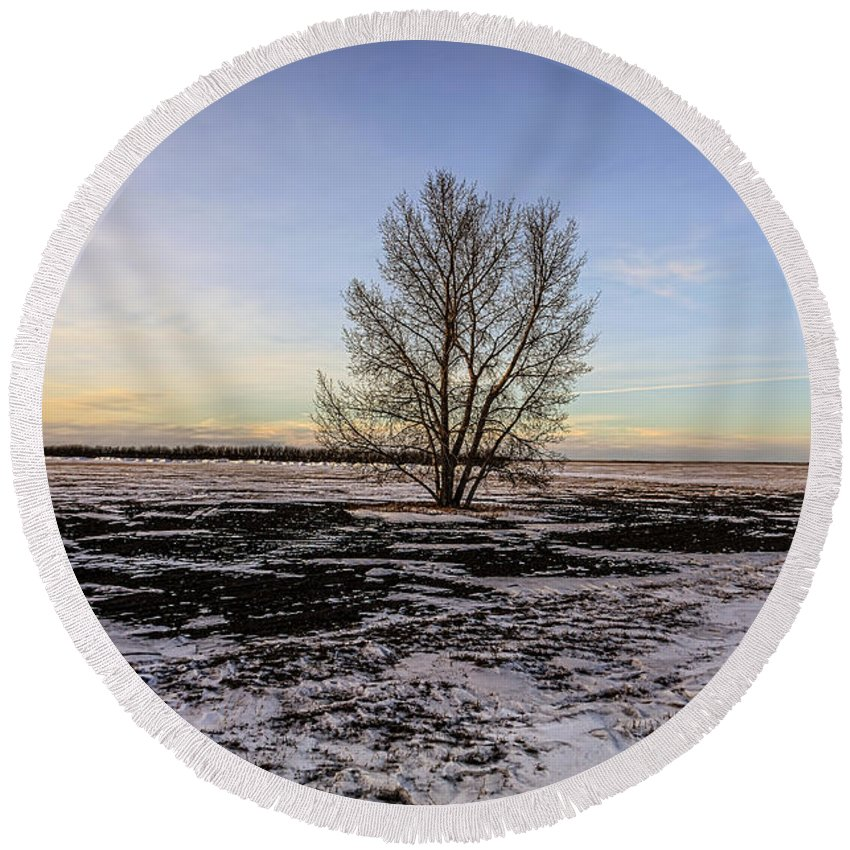 Tree Round Beach Towel featuring the photograph Tree In The Field by Viktor Birkus