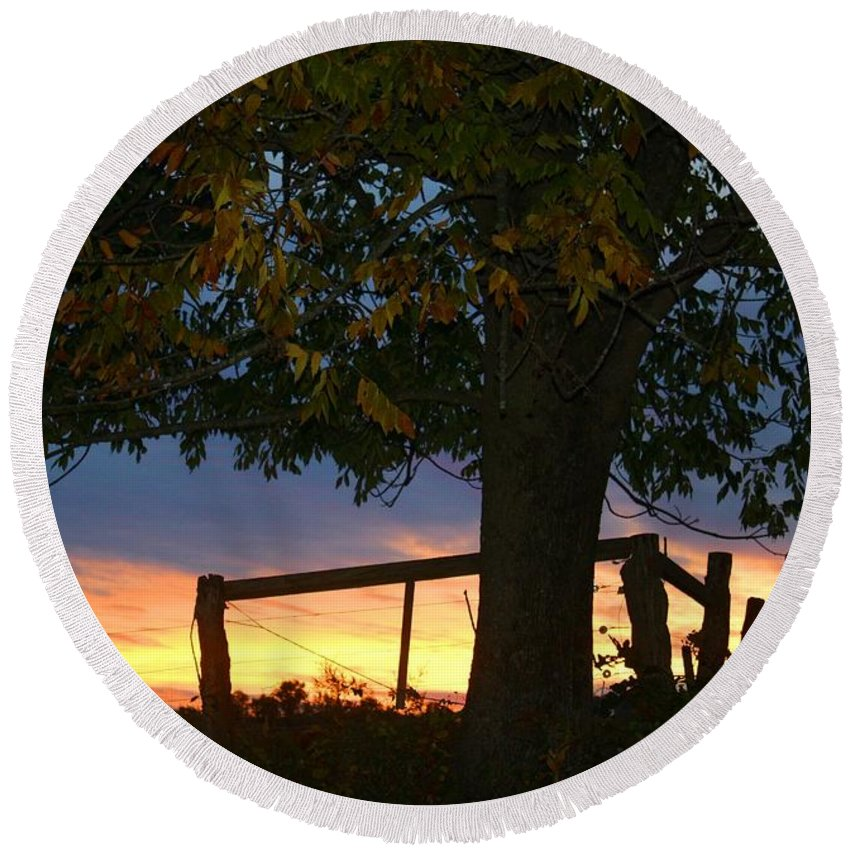 Tree Round Beach Towel featuring the photograph Tree In The Sunset by Kathryn Meyer