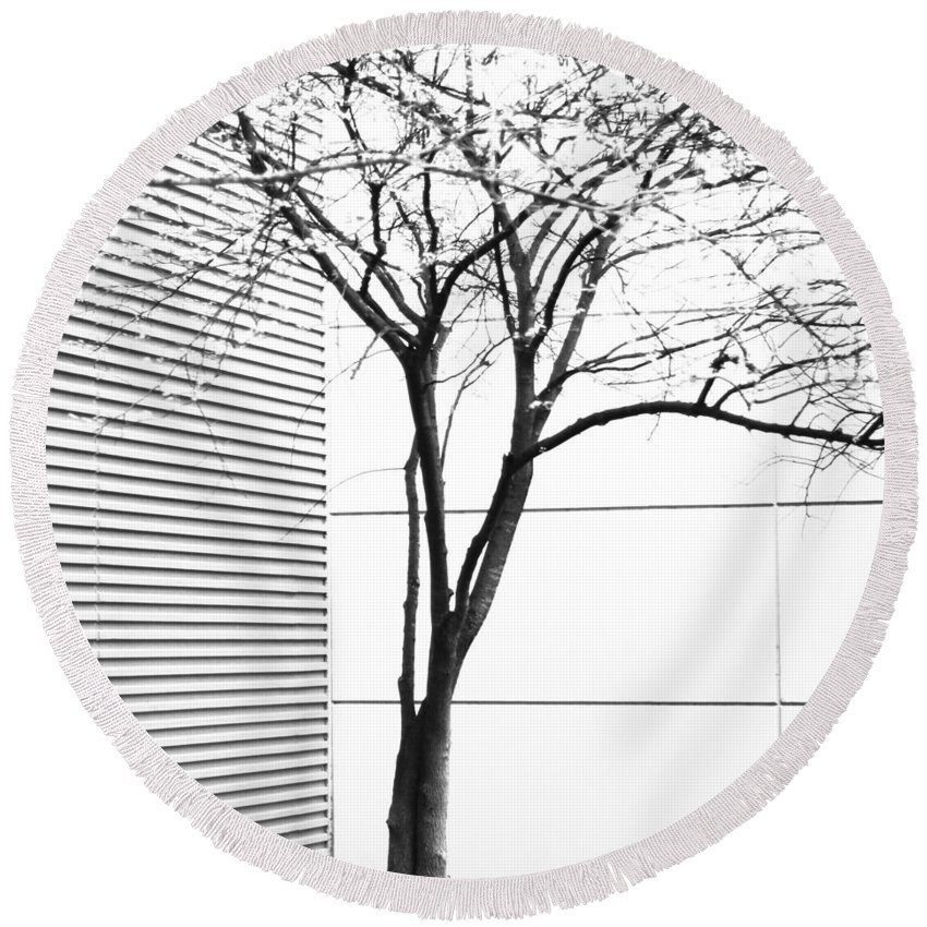 Art Round Beach Towel featuring the photograph Tree Lines by Darryl Dalton