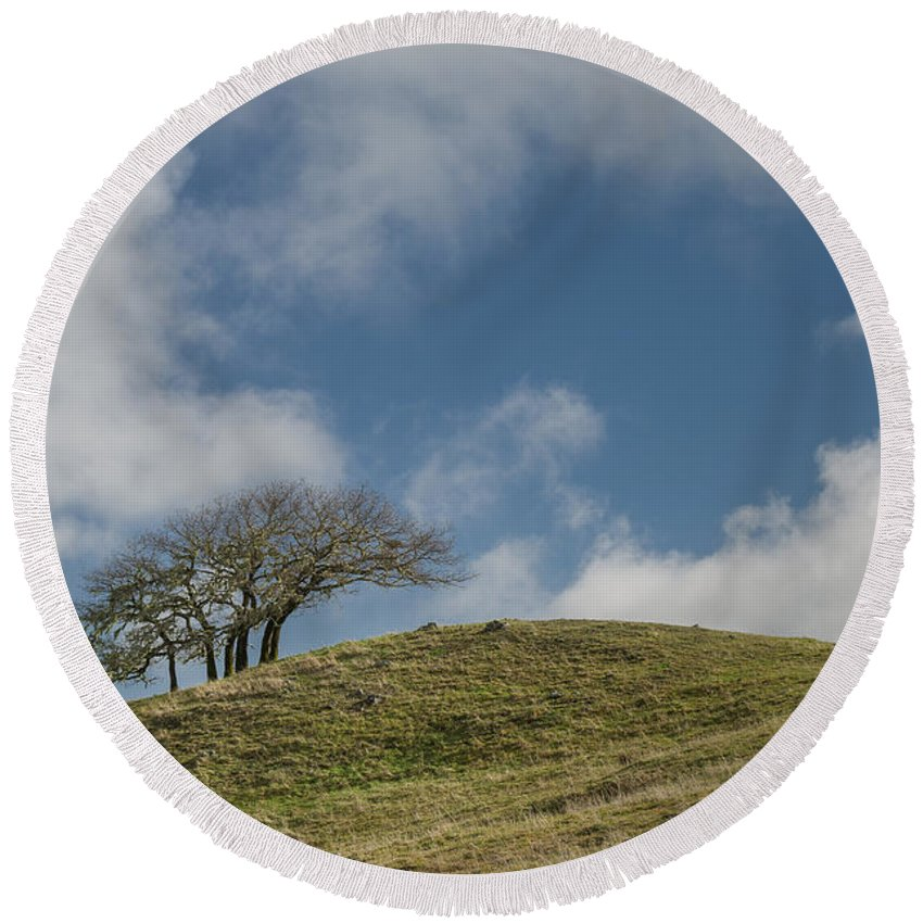Green Round Beach Towel featuring the photograph Tree On A Hill by Greg Nyquist