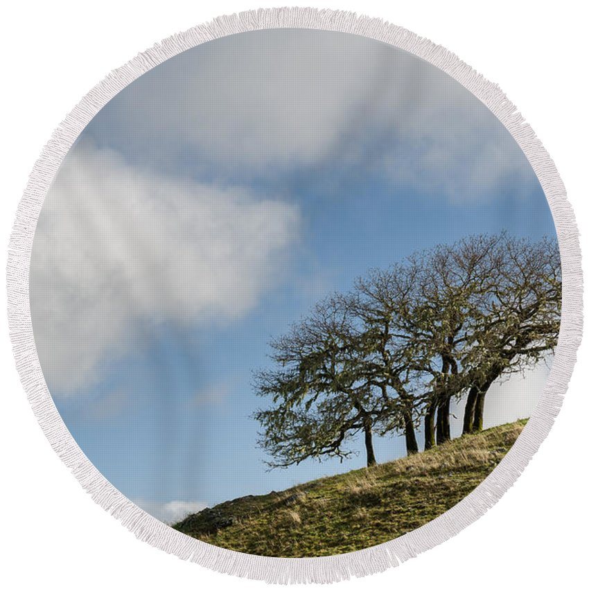 Humboldt Hills Round Beach Towel featuring the photograph Tree On Hillside by Greg Nyquist