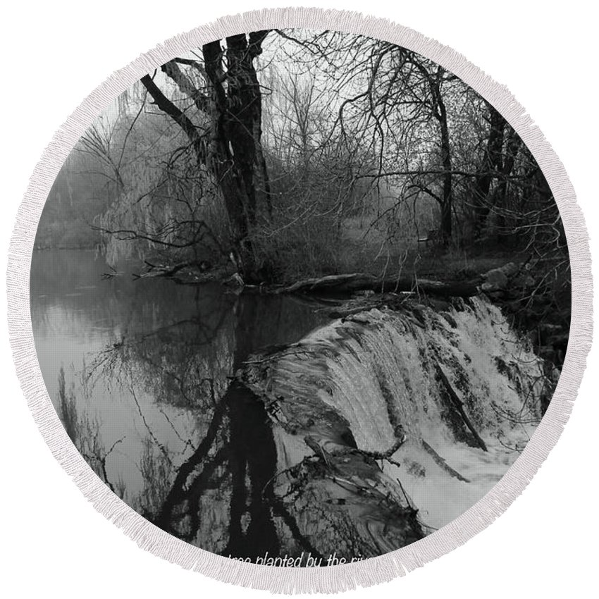 Black And White Round Beach Towel featuring the photograph Tree Planted By The Rivers by Debbie Nobile