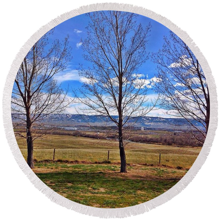 Nature Round Beach Towel featuring the photograph Tree View by Sarah Jane Thompson