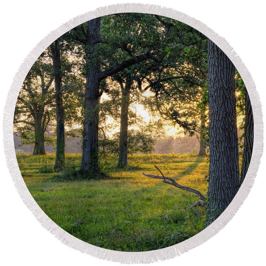 Trees Round Beach Towel featuring the photograph Trees At Sunrise by David Stone