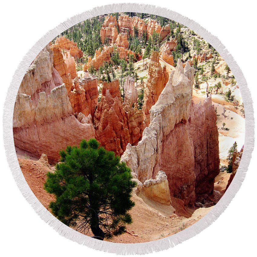 Bryce Canyon Round Beach Towel featuring the photograph Tree's Eye View by Meghan at FireBonnet Art