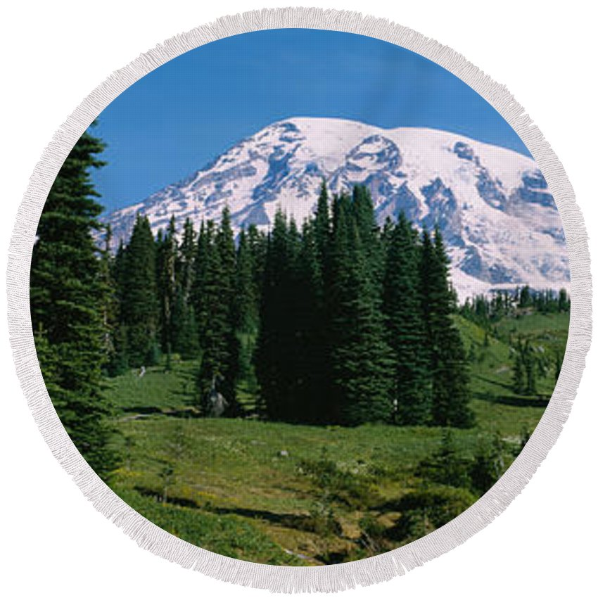 Photography Round Beach Towel featuring the photograph Trees In A Forest, Mt Rainier National by Panoramic Images