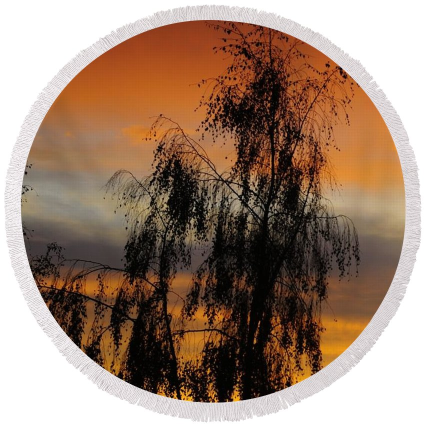 Trees And Sunset Round Beach Towel featuring the photograph Trees In The Sunset by Jenny Potter