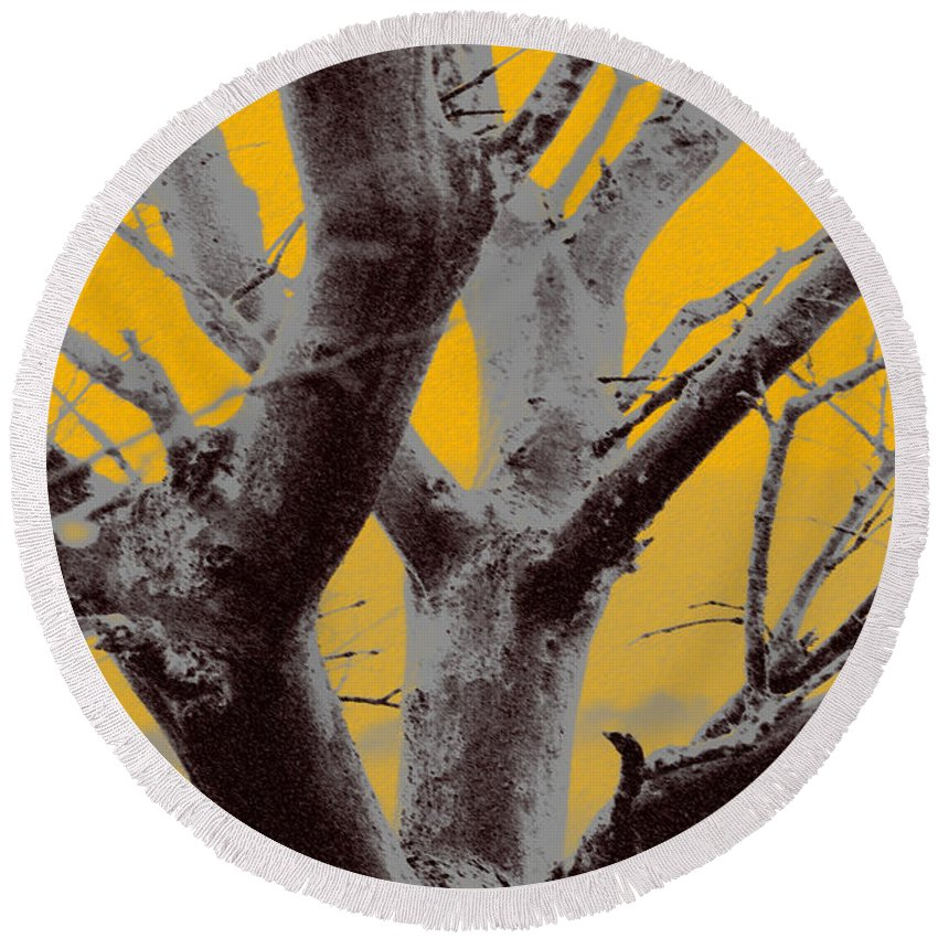 Tree Art Round Beach Towel featuring the photograph Winter Trees In Yellow Gray Mist 1 by Olivia Novak