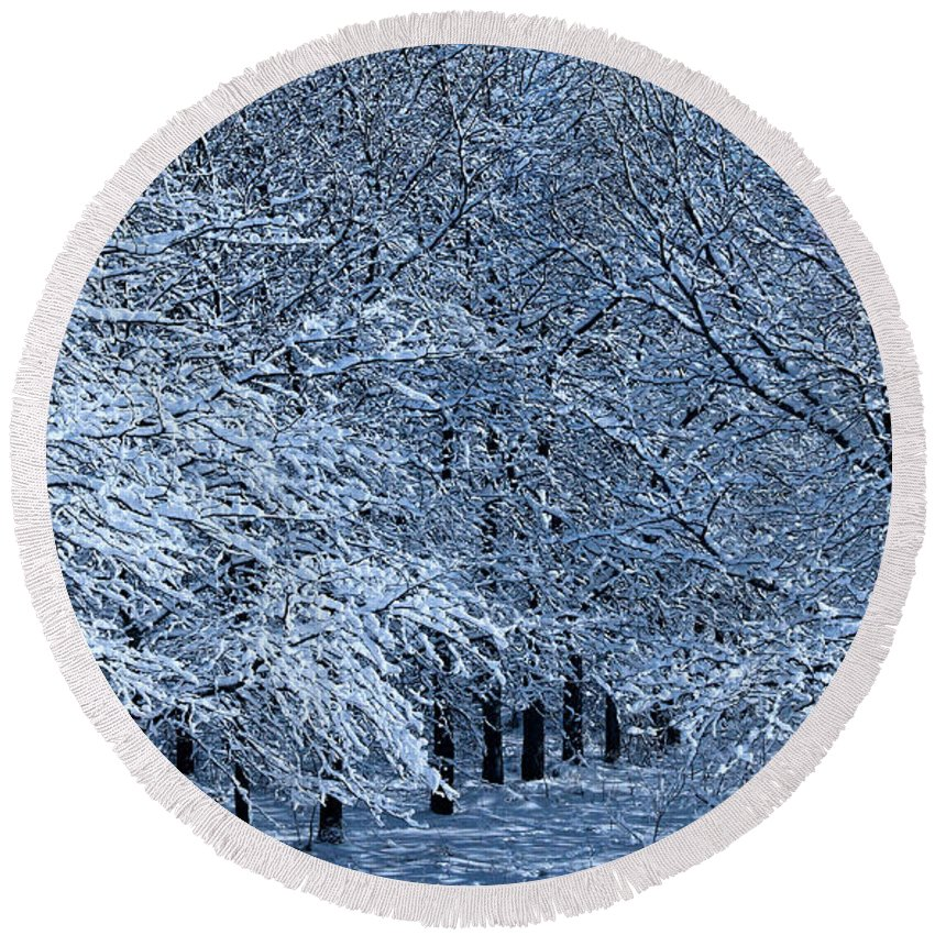 Trees Round Beach Towel featuring the photograph Trees Of Winter by Elizabeth Winter