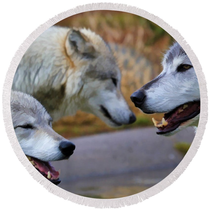 Wolves Round Beach Towel featuring the photograph Triple Take Painted by Athena Mckinzie