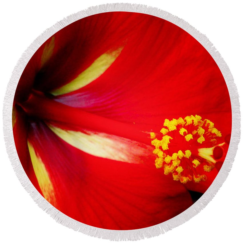 Hibiscus Round Beach Towel featuring the photograph Tropical Hibiscus - Starry Wind 04a by Pamela Critchlow